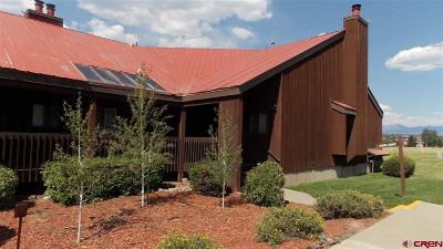 Pagosa Springs Condo/Townhouse For Sale: 247 Davis Cup Drive #4242