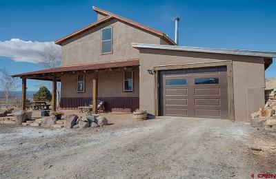 Montrose Single Family Home UC/Contingent/Call LB: 16222 6900 Road