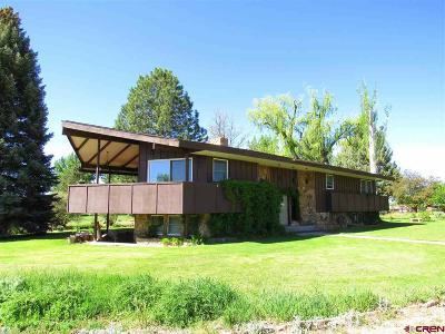 Single Family Home For Sale: 33238 Highway 92