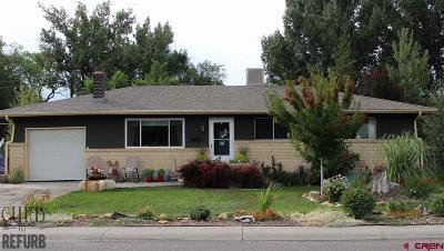 Montrose Single Family Home For Sale: 705 York Street
