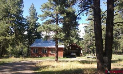 Pagosa Springs Single Family Home For Sale: 201 Nutria Circle