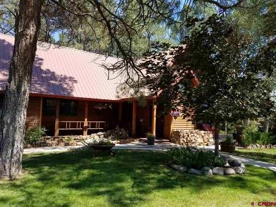 Pagosa Springs Single Family Home For Sale: 21 Fiesta Place
