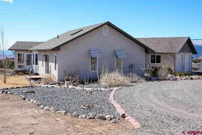 Single Family Home For Sale: 24821 Cactus Park Road