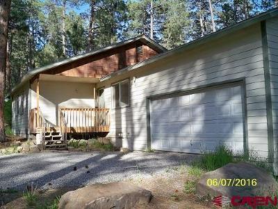 La Plata County Single Family Home For Sale: 501 Pine Tree Drive