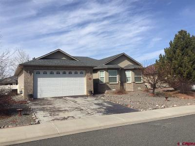Montrose Single Family Home For Sale: 2648 Glen Mor Drive