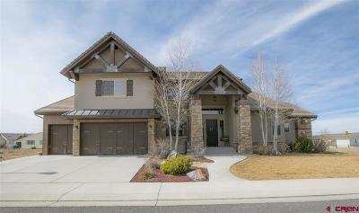 Montrose Single Family Home For Sale: 2432 Bear Lake Drive