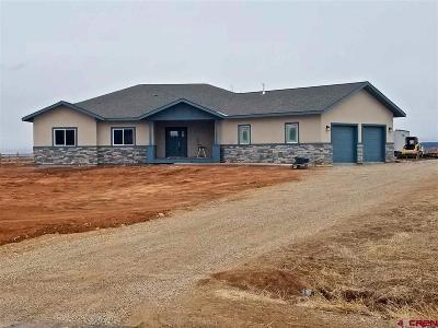 Durango Single Family Home For Sale: 37 Encantado Court