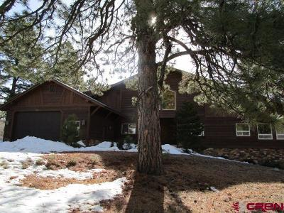 Pagosa Springs Single Family Home For Sale: 439 Jacobson Circle