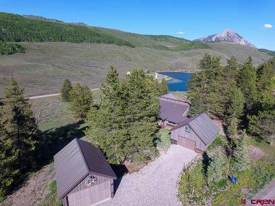 Crested Butte CO Single Family Home For Sale: $2,300,000