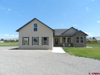 Montrose Single Family Home For Sale: 11850 Joyful Way