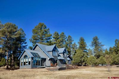 Durango Single Family Home For Sale: 32 Meadows Road