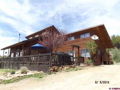 Mancos Single Family Home For Sale: 12914 Road 41.9