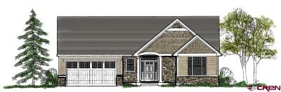 Montrose Single Family Home For Sale: 1216 Fivemile Creek Avenue