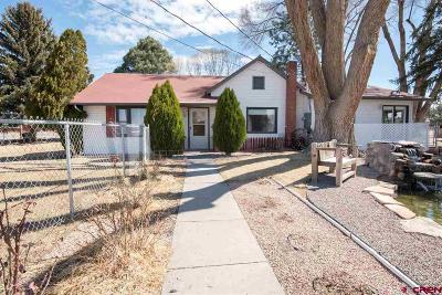 Montrose Single Family Home For Sale: 1621 6400 Road