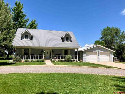Montrose Single Family Home For Sale: 61801 Spring Creek Road