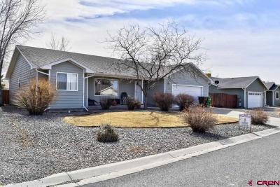 Montrose Single Family Home For Sale: 2655 Iris Court