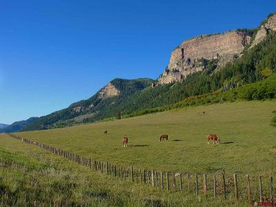 Durango Residential Lots & Land Back on Market: N Us Hwy 550