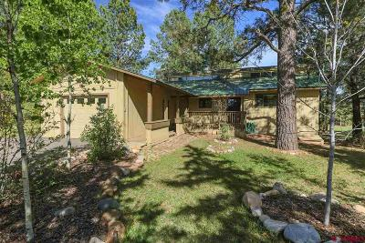 Pagosa Springs Single Family Home For Sale: 378 Handicap Avenue