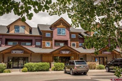 Pagosa Springs Condo/Townhouse For Sale: 191 Talisman Dr. #203