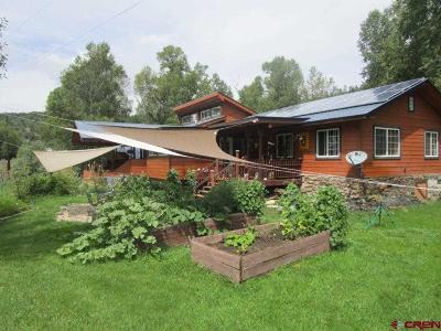 Pagosa Springs Single Family Home NEW: 19 Pony Express