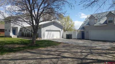 Single Family Home NEW: 791 Barrow Mesa Road