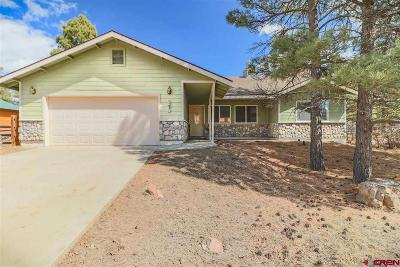 Pagosa Springs Single Family Home For Sale: 185 Lakewood Street