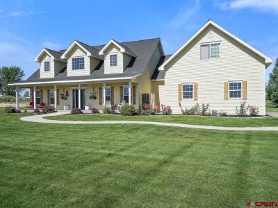 Montrose Single Family Home For Sale: 11785 Joyful Way