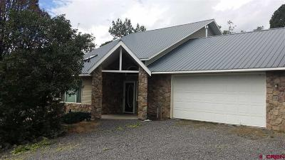 Single Family Home For Sale: 20688 Surface Creek Road