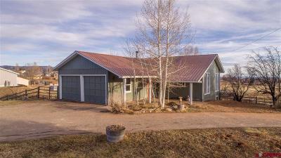 La Plata County Single Family Home For Sale: 490 E Cedar Drive