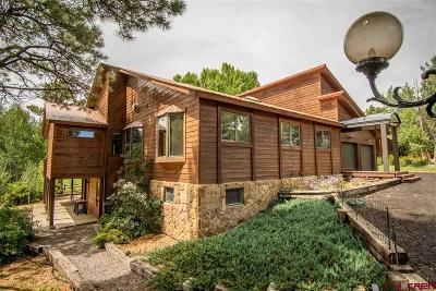 Pagosa Springs Single Family Home UC/Contingent/Call LB: 163 Fairway Place