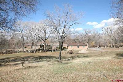 Eckert CO Single Family Home For Sale: $375,000