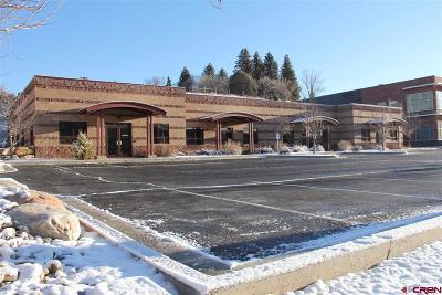 Durango Commercial For Sale: 135 Burnett Drive #4