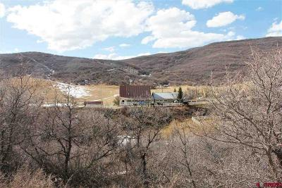 Hotchkiss, Crawford, Paonia Single Family Home For Sale: 19253 Stevens Gulch Road