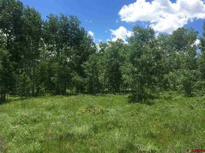 Crested Butte South Residential Lots & Land For Sale: 60 Anderson Drive