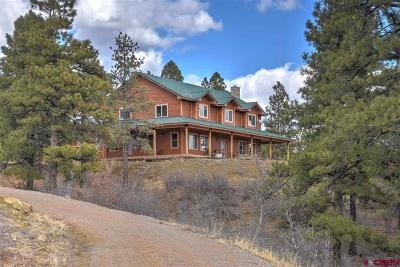 Bayfield Single Family Home NEW: 4334 Cr 502