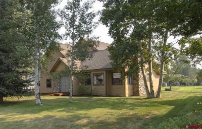 Durango Single Family Home NEW: 61 Stevens Creek Lane