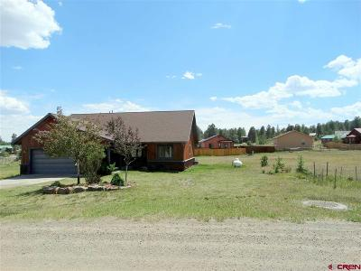 Pagosa Springs Single Family Home For Sale: 1119 Hills Circle