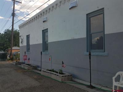 Delta Condo/Townhouse For Sale: 114 W 6th Street
