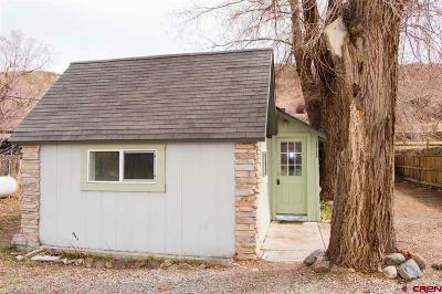 Paonia CO Single Family Home NEW: $151,000