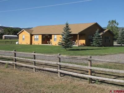 Montrose Single Family Home For Sale: 23414 Uncompahgre