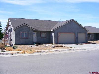 Montrose Single Family Home For Sale: 1316 Gold Creek Drive