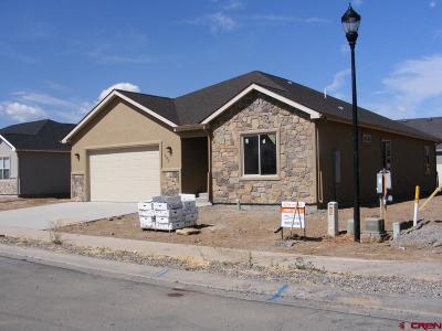 Montrose Single Family Home For Sale: 503 Vermillion Avenue