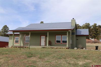 Pagosa Springs Single Family Home For Sale: 420 Ponderosa Drive