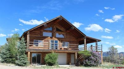 Mancos Single Family Home For Sale: 40135 Hwy 184