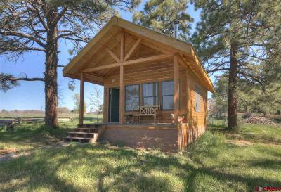 Mancos Single Family Home For Sale: 11232 Road 42