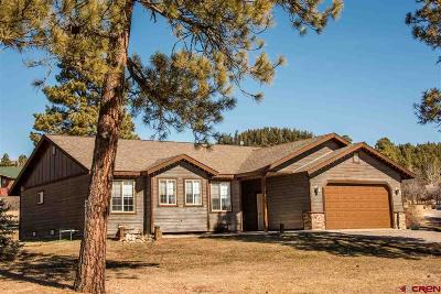 Pagosa Springs Single Family Home For Sale: 108 Escobar Avenue