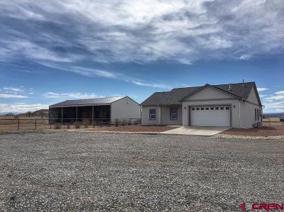 Montrose Single Family Home For Sale: 57865 Jig Road