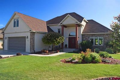 Montrose Single Family Home For Sale: 3865 Grand Mesa Drive