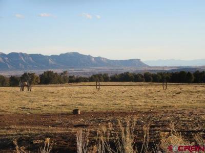 Montezuma Farm UC/Contingent/Call LB: 27374 Road S