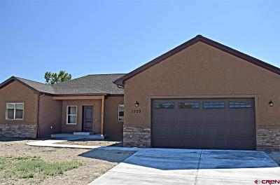 Montrose Single Family Home For Sale: 1720 Galaxy Dr.